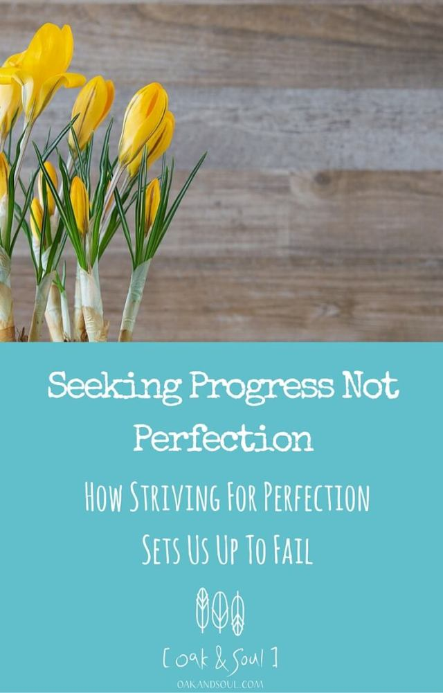 Seeking Progress Not Perfection