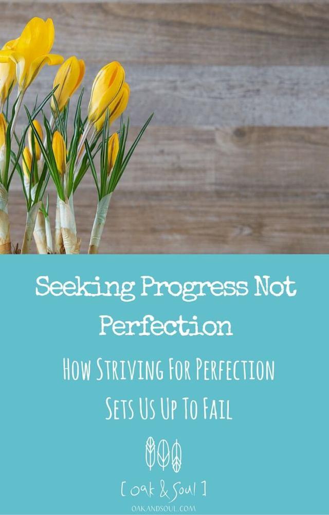 Seeking Progress Not Perfection